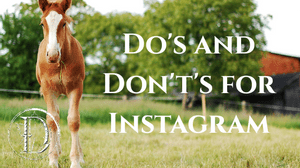 Dos and Don'ts of Instagram - Blog Post | Full Stride Solutions